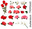 Set of a beautiful flowers on a white background. Vector. - stock photo
