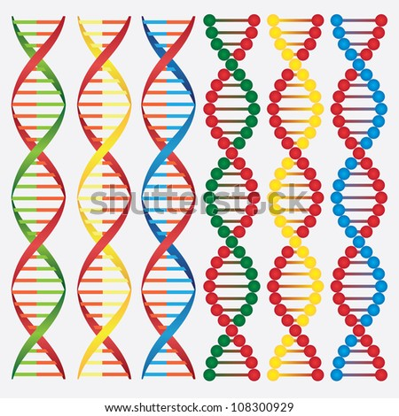 Set of abstract images of DNA molecules on the white background. - stock vector