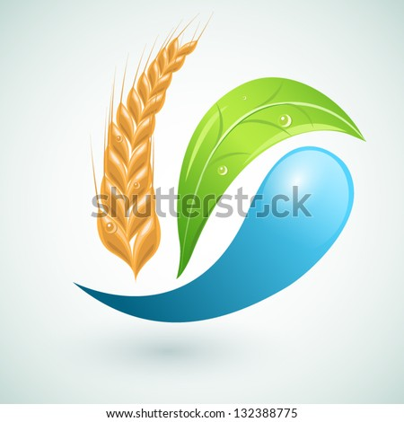 Set of agriculture design elements vector such a logo - stock vector