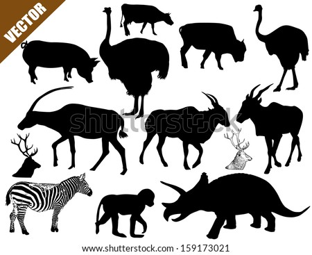 Set of animals collection on white background, vector illustration