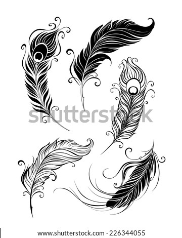 set of artistically painted feathers on a white background. - stock vector