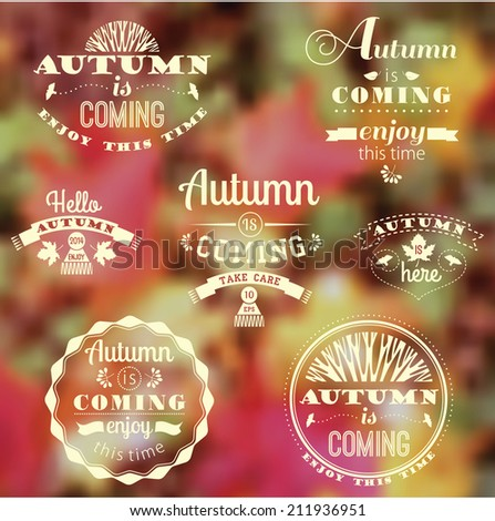 Set of Autumn Labels and Signs With Retro Typography with vector blurred leaf background. - stock vector