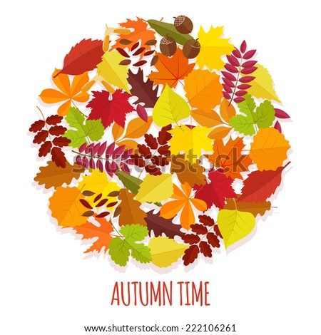 set of autumn leaves in flat style. on  white background - stock vector