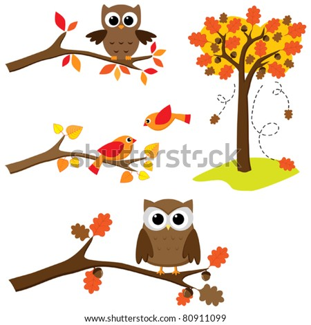 Set of autumn nature elements: owls and birds on branches and oak tree - stock vector