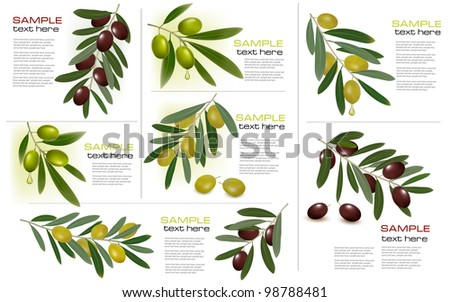 Set of backgrounds with green and black olives. Vector illustration. - stock vector