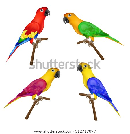 Set of beautiful colorful parrots isolated on white background- vector illustration. Colors: red, green, yellow and blue, purple, pink . - stock vector