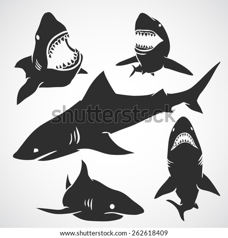 Set of big sharks black silhouettes. Vector illustration.  - stock vector