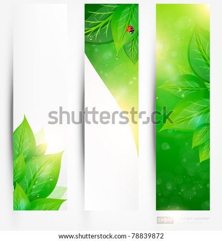 Set of bio concept design eco friendly banners for summer design - stock vector