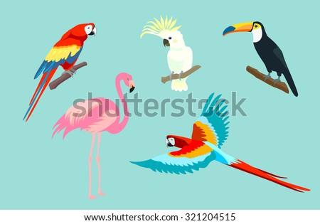 Set of birds. Bright exotic tropical birds. Macaw, Cockatoo, flamingo, toucan. Vector. - stock vector