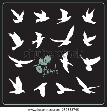 Set of birds silhouettes - flying. White on a black background. - stock vector