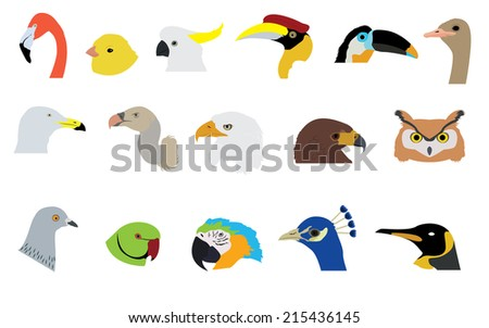 Set of Birds Vectors and Icons