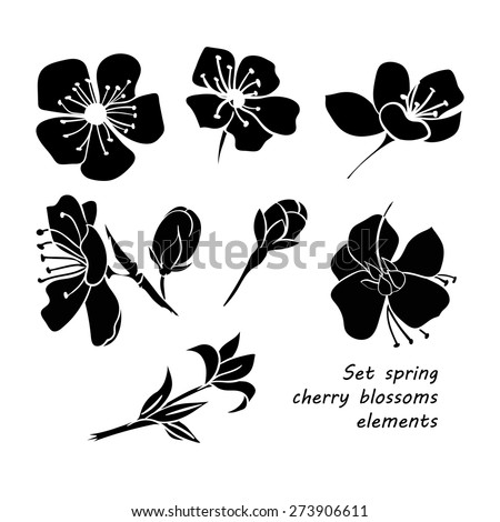 Set of black silhouette spring cherry blossom flowers. Hand drawing. Black and white. Vector illustration - stock vector