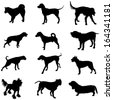 Set of black vector silhouette of dogs, isolated on white background. Illustration of dog collection. - stock vector