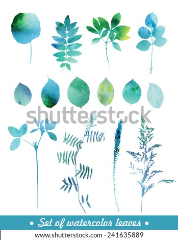 Set of blue watercolor leaves and grass. - stock vector