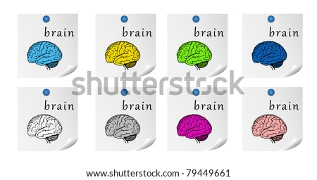 set of brains on list of paper - stock vector