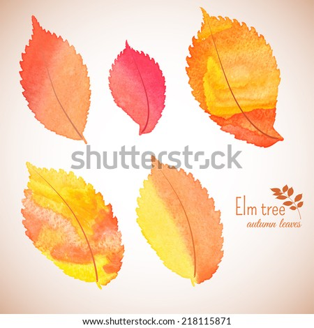 Set of bright autumn elm leaves. Red, yellow and orange colors. Vector illustration. - stock vector