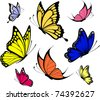 set of butterflies isolated on white background in vector format very easy to edit, individual objects - stock vector