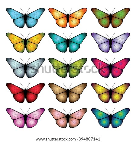 Set of butterflies isolated on white background. Vector illustration. - stock vector