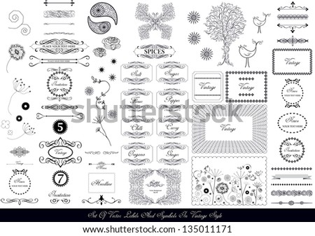 set of calligraphic vector elements in vintage style isolated on white background - stock vector