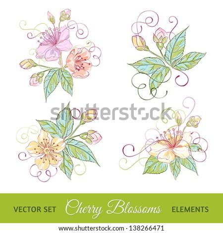 Set of cherry flowers - stock vector