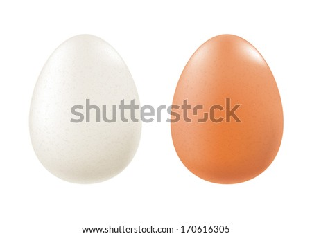 Set of chicken eggs - white and brown.