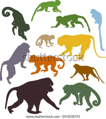 set of colored silhouettes of monkeys