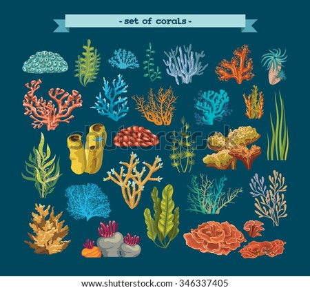 Set of colorful corals and algae on a blue background. Natural underwater vector illustration. - stock vector