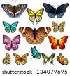 Set of colorful realistic isolated butterflies.Vector illustration - stock vector