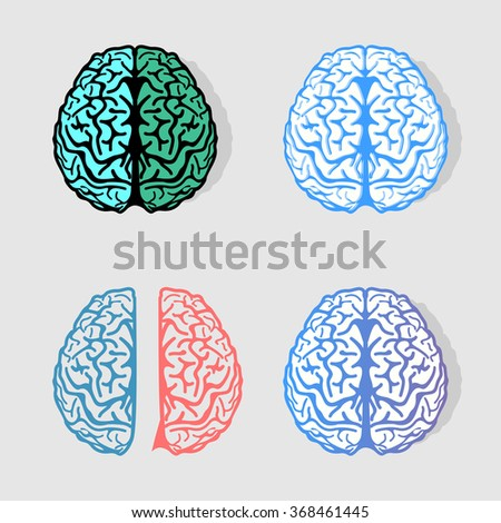 Set of colorful vector brains logos. Collection of anatomy elements. Group of intelligence signs. Bright hemispheres. Scientific logotypes. Medical labels. Cortex illustration. Neurobiology symbols. - stock vector