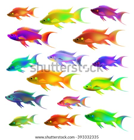 Set of colourful fish