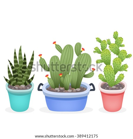 set of cute cartoon cactuses into pots on white background. can be used like stickers, for greeting cards or posters