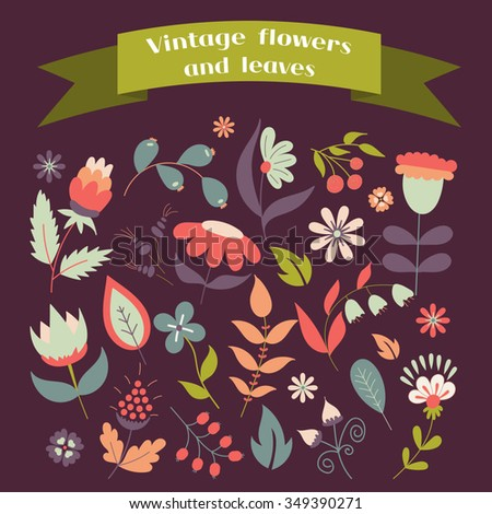 Set of cute doodle flowers and leaves for decoration or cards, wedding invitation, postcards, party, baby shower, birthday, pattern. Vintage floral elements template. Vector gentle illustration. - stock vector