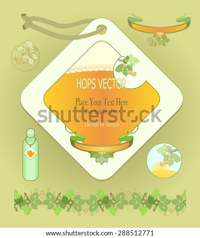 Set of design elements and  label for shampoo. Cosmetic means to wash hair on beer. Images of plants hops.  - stock vector