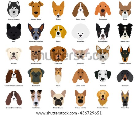 Dogs head icon set vector flat stock vector 333006011 for What type of dog is this