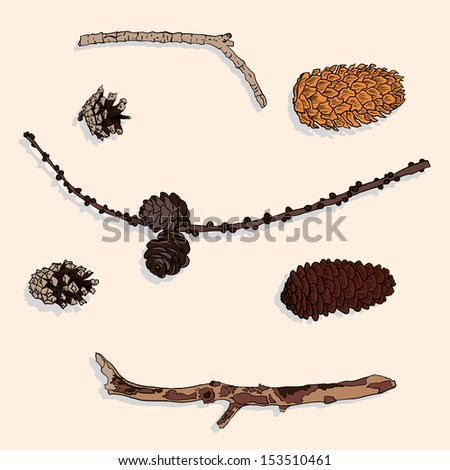 set of different cones and branches, vintage vector illustration - stock vector