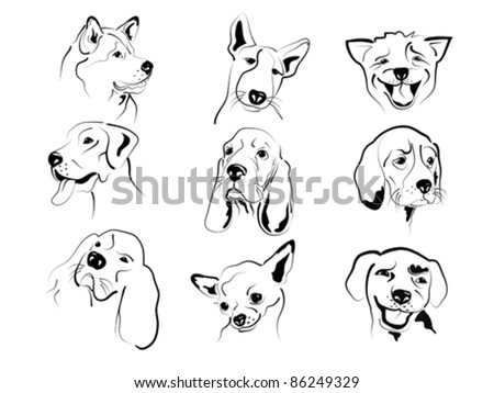Set of different dogs friendly graphic faces sketches. - stock vector