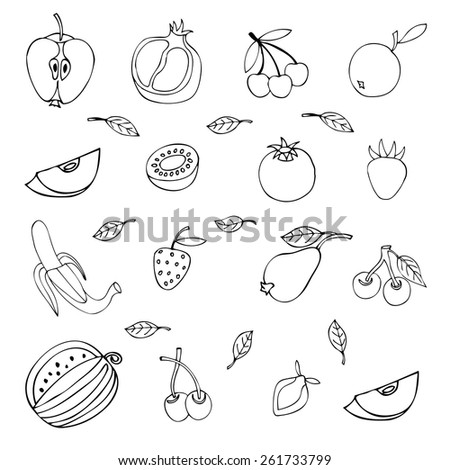 set of different fruits isolated on white background - stock vector