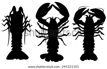 set of different lobsters isolated - stock vector