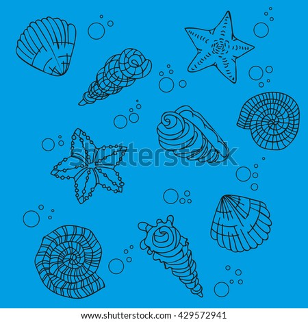 set of different sea shells on a blue background