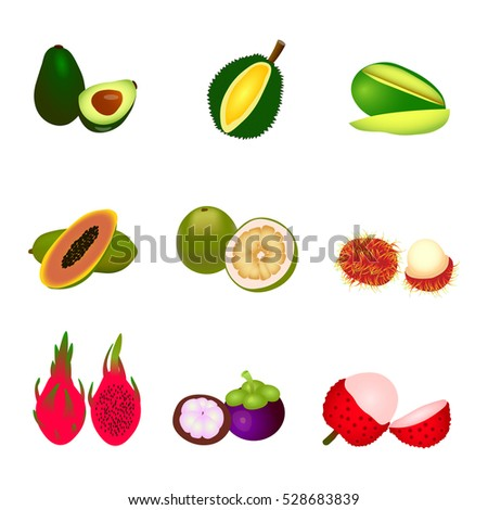 Set of different tropic fruits vector illustration. avocado, mangosteen, rambutan, lychee, pomelo, durian, pitaya, dragon fruit, mango