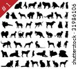 Set # 1 of different vector pets silhouettes for design use - stock vector