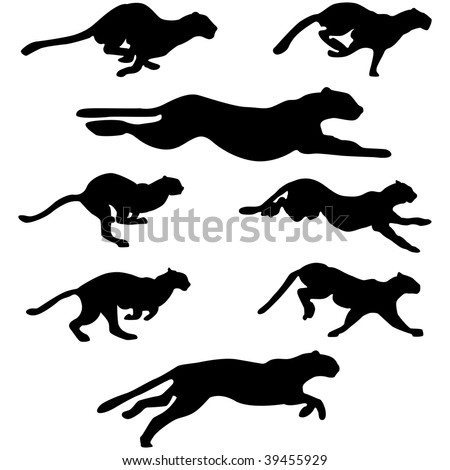 Set of different wildcats running silhouettes for design use - stock vector