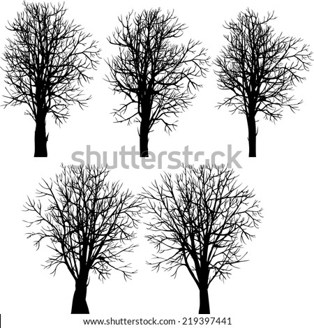 set of different winter trees, vector illustration - stock vector