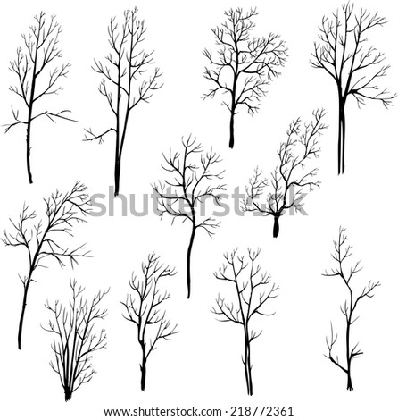 set of different winter trees, vector illustration, hand drawn design element - stock vector