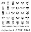 set of Dog breed icons - vector illustration. - stock vector