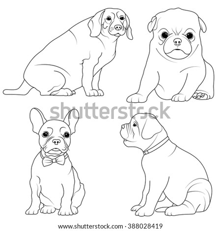 set of 4 dogs coloring page for children to coloring book
