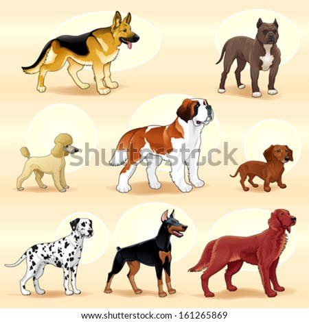 Set of dogs. Vector illustration - stock vector