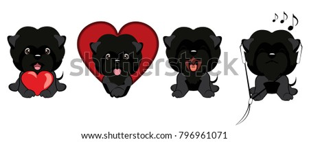 set of dogs with different emotions front view. dog Affenpinscher sitting.