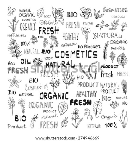 Set of doodle herbs, plants, and the lettering: natural, organic, cosmetics, fresh, bio, product - stock vector