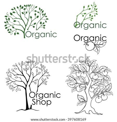 Set of drawings of trees and design elements related to the environment. Organic shop. - stock vector